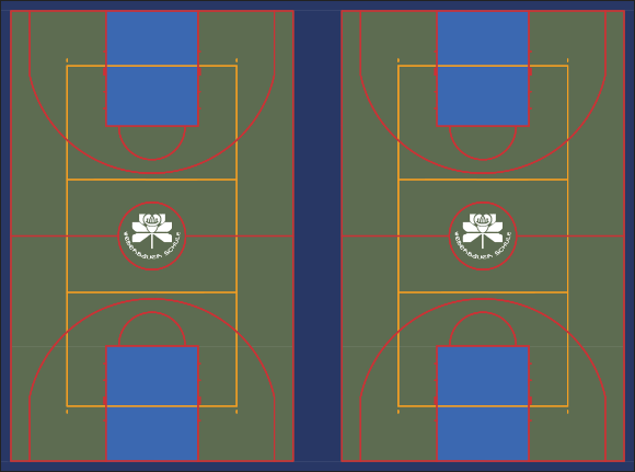VersaCourt Multisport Court in Olive, Navy Blue, and Royal Blue