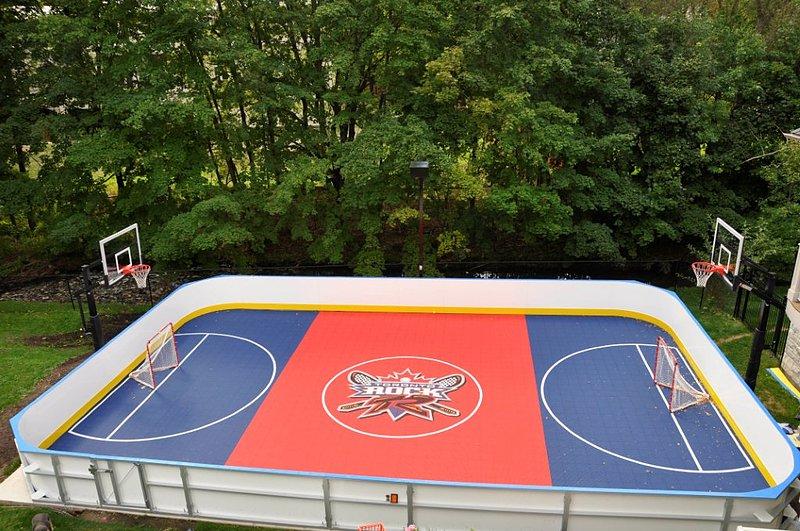 Hockey Rink Gallery. View Full Gallery